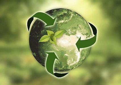 Итоги всероссийского конкурса экологических рисунков